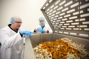 productieproces vleesvervanger