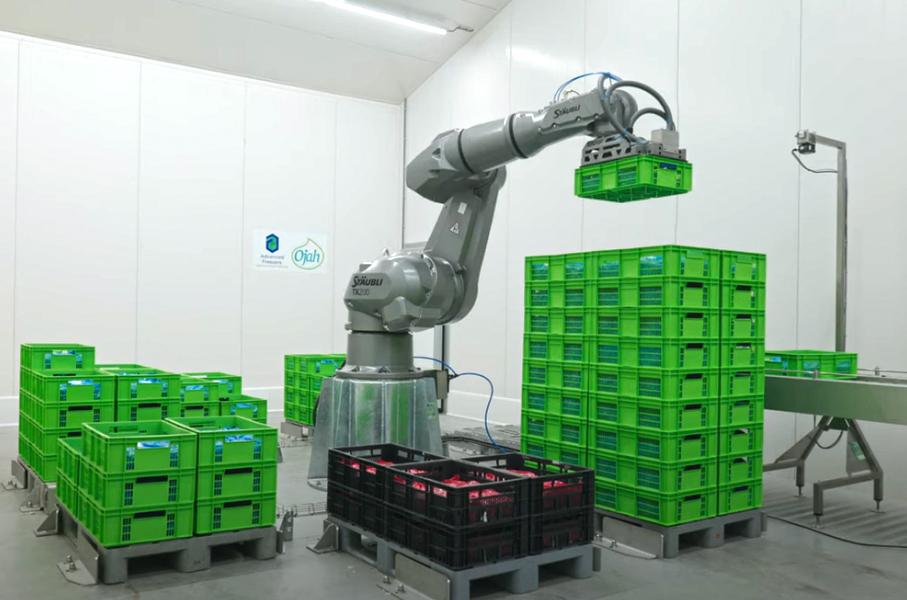 Robotarm voor palletiseren van kratjes bij Ojah B.V. in Ochten, producent van Beeter